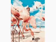 Птицы и бабочки картины по номерам Фламинго