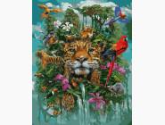 Животные и рыбки Великолепие природы