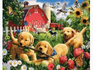 Коты и собаки Щенки на ферме