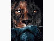 Животные и рыбки Грозный лев