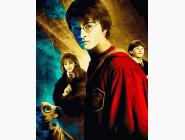 Портреты, люди на картинах по номерам Гарри Поттер и тайная комната
