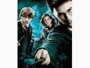 Портреты, люди на картинах по номерам Гарри Поттер и орден феникса