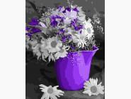 Цветы, натюрморты, букеты Ромашки