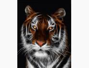 Тигр во тьме