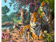Индийские тигры