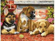 Три щенка и мячик
