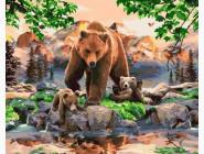 Животные и рыбки Медвежье семейство