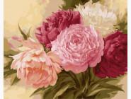 Цветы, натюрморты, букеты Королевские пионы