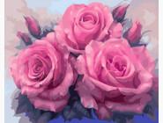 Три пышные розы