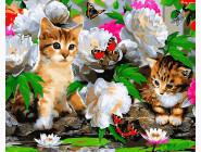 Коты и собаки картины по номерам Котята с бабочками