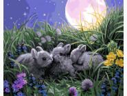 Милые зайчата