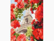 Букеты и натюрморты: картины без коробки Париж в цветах