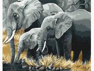 Животные: картины без коробки Семья слонов