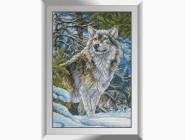 Волки в горах
