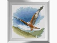Птицы и павлины Сокол в полете