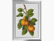 Натюрморт, фрукты и овощи Сливовая веточка