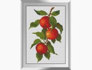 Натюрморт, фрукты и овощи Веточка яблок