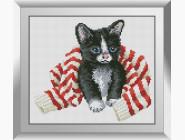 Котенок в свитере