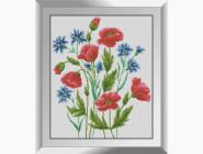 Цветы и букеты Васильки с маками