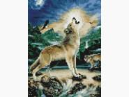 Животные и жители моря Волк при луне