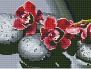Новинки алмазной вышивки Орхидея на камнях