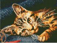 Новинки алмазной вышивки Бенгальский кот