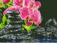 Новинки алмазной вышивки Орхидеи на камнях