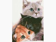Новинки алмазной вышивки Три кота