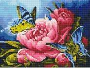 Новинки алмазной вышивки Бабочки на пионе