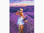 Новинки алмазной вышивки Девушка в поле лаванды