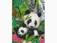 Животные и жители моря Панда с ребенком