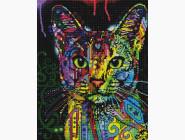 Новинки алмазной вышивки Красочный кот