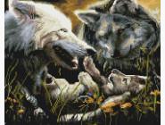 Животные и жители моря Семья волков
