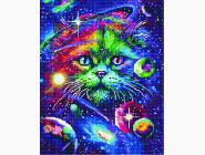 Новинки алмазной вышивки Космический кот