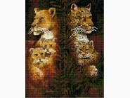Новинки алмазной вышивки Животные