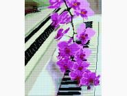 Новинки алмазной вышивки Орхидея на пианино
