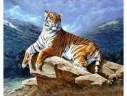 Новинки алмазной вышивки Год тигра (GL71016)