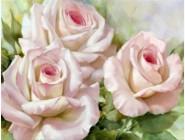 Новинки алмазной вышивки Нежные розы (GL77919)