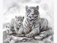 Новинки алмазной вышивки Белые тигры (GM73257)