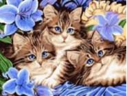 Новинки алмазной вышивки Котята в цветах (GD74041)