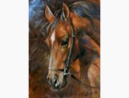 Новинки алмазной вышивки Лошадь (GD75232)