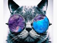 Новинки алмазной вышивки Кот в очках (JA20941)
