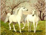 Животные и жители моря Волшебные лошадки (GA70558)