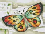Радужный бабочка (JA1132, частичная выкладка)