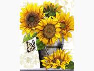 Цветы и букеты Подсолнухи (AKG74689)