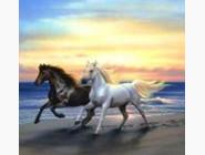 Животные и жители моря Стремительные лошади (ME20087)