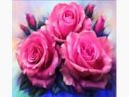 Цветы и букеты Бархатные розы (ME20196)