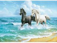 Новинки алмазной вышивки Лошади у моря (GA71273)
