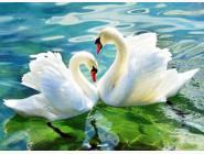Новинки алмазной вышивки Лебеди (GA73991)
