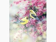 Новинки алмазной вышивки Птички (GL73880)